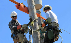 Electrical Lineworker Student